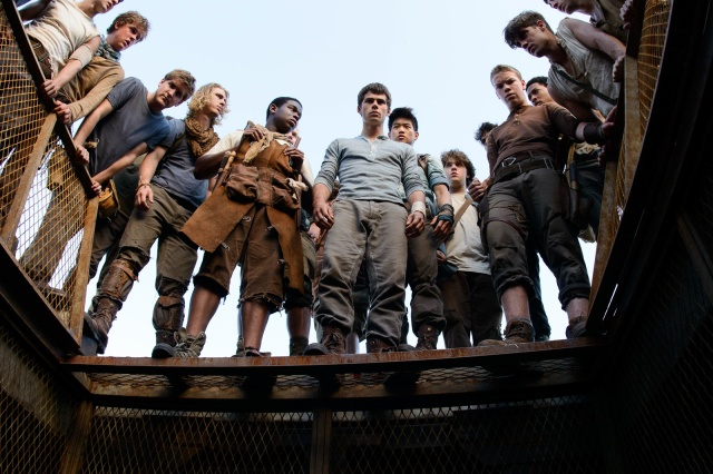 The-Maze-Runner-Film-image-the-maze-runner-film-36074009-1600-1067